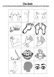 English Worksheets: The Body - Cut & Paste Worksheet