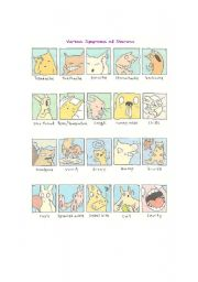 English Worksheet: various symptoms of sickness