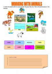 English Worksheets: WORKING WITH ANIMALS