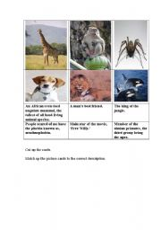 English Worksheets: Animal descriptions