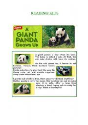 English Worksheets: A GIANT PANDA