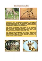 English Worksheets: THE AFRICAN GIRAFFE