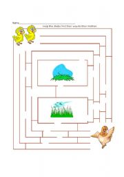 English Worksheets: Help the chicks to find their mother