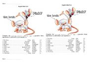 Mini test comparative Pinky and the Brain