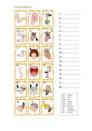 English Worksheets: Body Parts 1