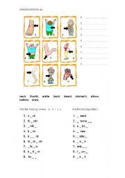 English Worksheets: Body Parts 3
