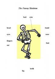 English Worksheets: The  Funny Skeleton