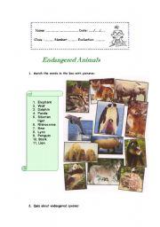 intermediate esl worksheets endangered animals. Black Bedroom Furniture Sets. Home Design Ideas