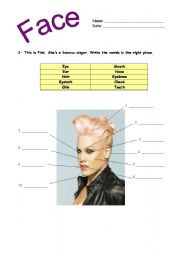 English Worksheets: label the picture