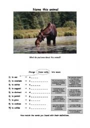 English Worksheets: THE MOOSE (fun lesson) (1/6) - Introduction