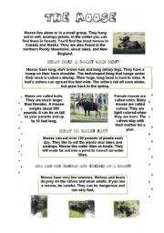English Worksheets: THE MOOSE (fun lesson) (3/6) - INFORMATION