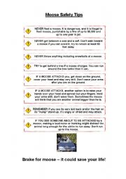 English Worksheets: THE MOOSE (fun lesson) (6/6) - MOOSE SAFETY TIPS
