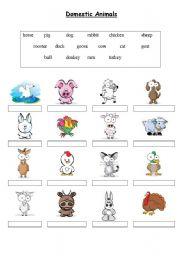 English Worksheet: Domestic Animals - Matching exercise