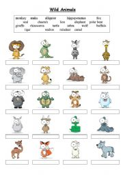 Wild Animals - Matching exercise