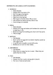 English Worksheet: Vertebrates Groups