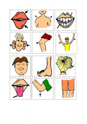 English worksheet: PARTS OF BODY