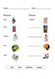 English Worksheets: Masculine/Feminine