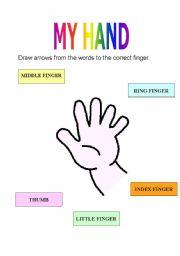 English Worksheets: My hand