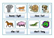 English Worksheets: COMPARISON SPEAKING CARDS - animals II (part 7)