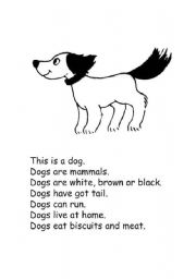 English Worksheets: js animals dictation 02