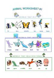 English Worksheets: Animal Worksheet