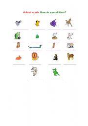 English Worksheets: Animal words