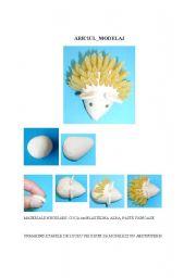 English Worksheets: hedgehog