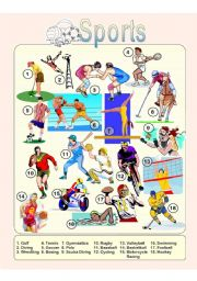 English Worksheet: Sports - Picture Dictionary