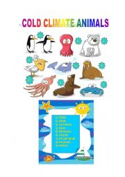 English Worksheets: COLD CLIMATE ANIMALS