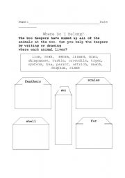 English Worksheets: Animal Coverings