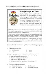 English Worksheets: Hedgehogs as Pets