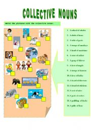 English Worksheet: COLLECTIVE NOUNS --- EXERCISES