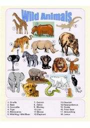 English Worksheets: Wild Animals - Picture Dictionary
