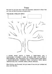 English Worksheet: TREE TYPES AND THEIR PARTS
