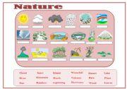English Worksheets: nature vocabulary