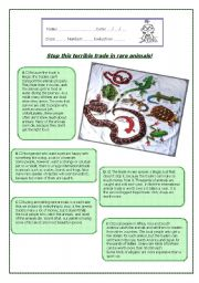 English Worksheets: Stop this terrible trade in rare animals!