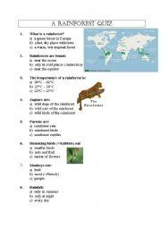 English Worksheet: rainforest quiz