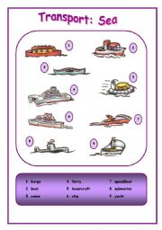 English Worksheet: Means of transport: Sea