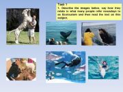 English powerpoint: Protecting our Environment