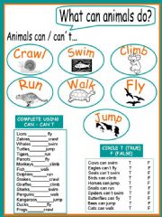 English powerpoint: What can/can´t animals do? 2 pages