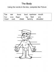 English powerpoint: The body