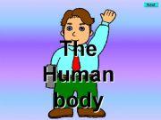 English powerpoint: Body parts - Kim´s Game