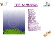English powerpoint: The Numbers