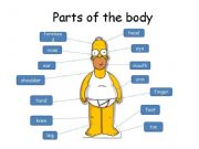 English powerpoint: parts of the body