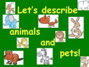 English powerpoint: Describing animals and pets