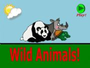 English powerpoint: What is this ? - Wild Animals - part 01
