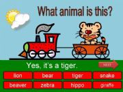 English powerpoint: What id this? Wild animals - part 02