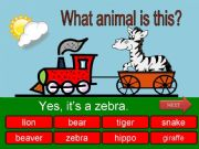 English powerpoint: What is this? Wild animals - part 03
