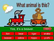 English powerpoint: What is this? - wild animals - part 04