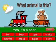 English powerpoint: What is this? - wild animals - part 05